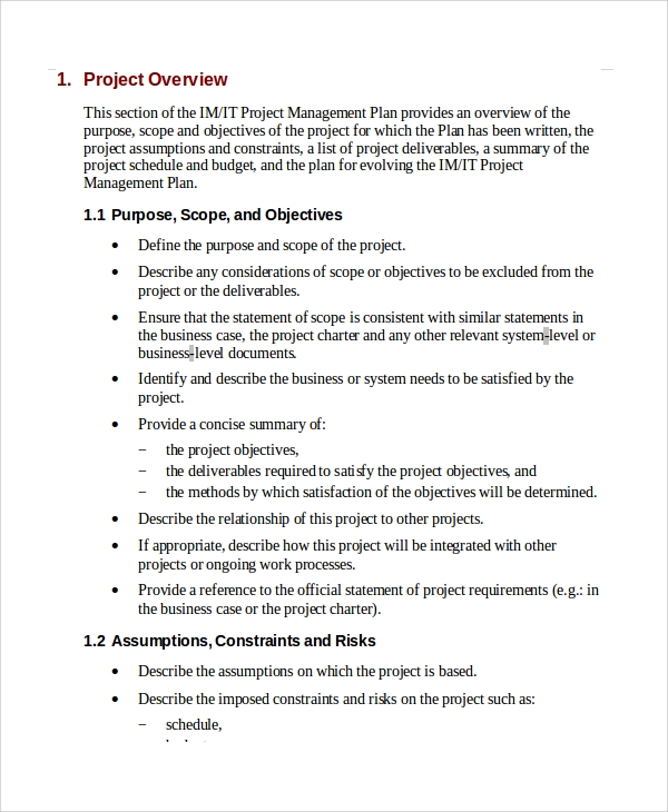 Sample IT Project Plan Template 6 Free Documents Download in – Project Plan Example
