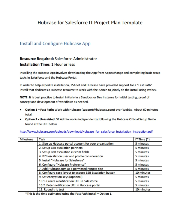 simple it project plan template