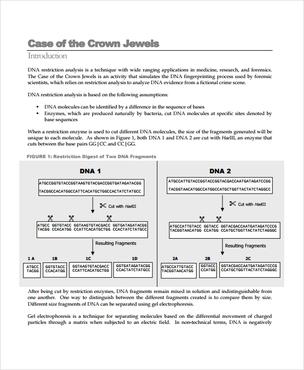 case of the crown jewels template