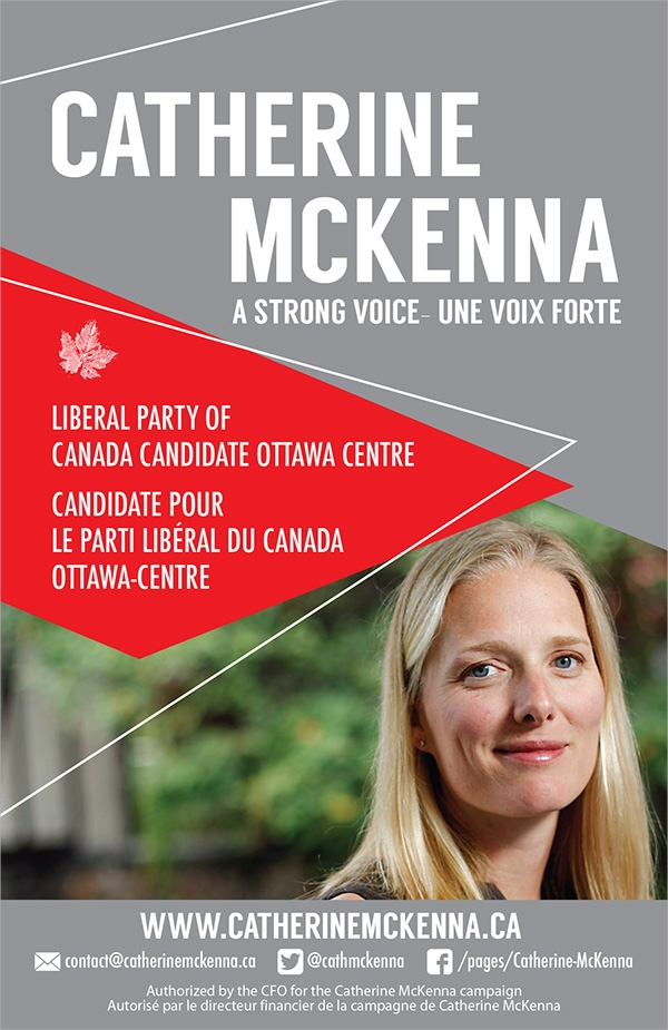 Amazing Political Brochure Template Pictures Of Brochures Geminifm