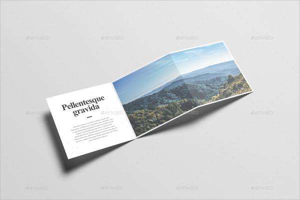 square z fold brochure