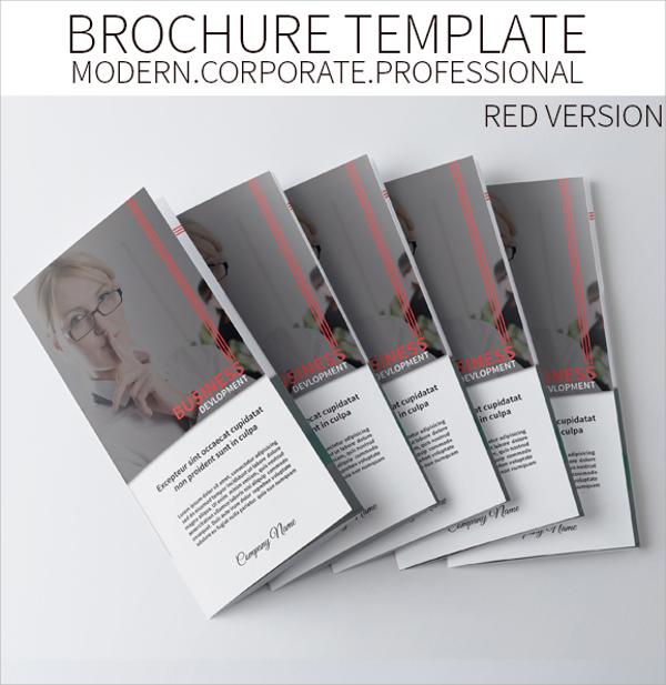 amazing folded brochure