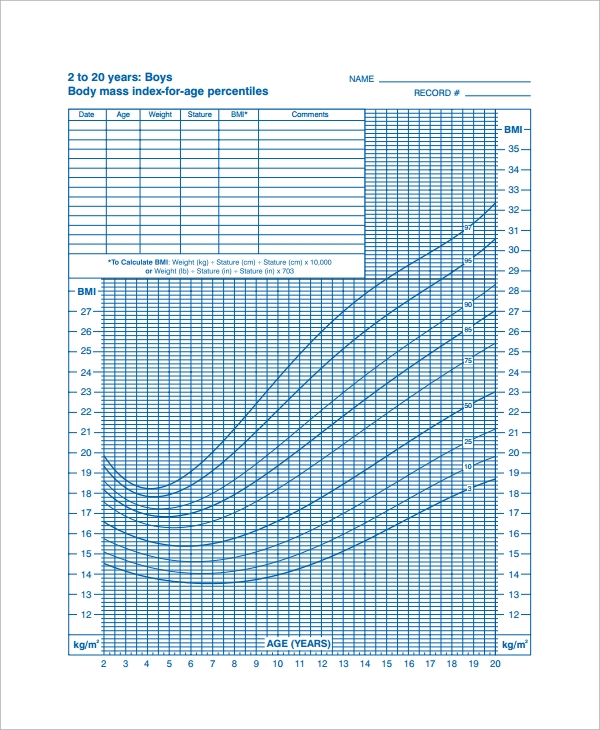 Sample Bmi Index Chart Template   Free Documents Download In