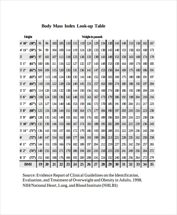 Sample BMI Index Chart Template - 19+ Free Documents Download in PDF