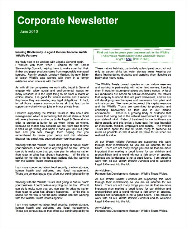 Sample Corporate Newsletter Template 7 Free Documents Download In
