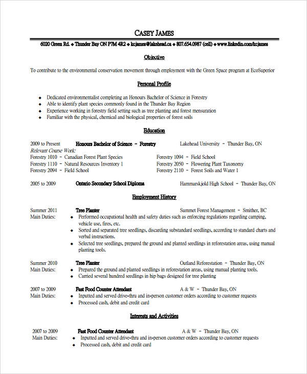 Skills Based Resume Template Word. Example Skills Resume. Help