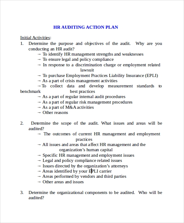 hr auditing plan template