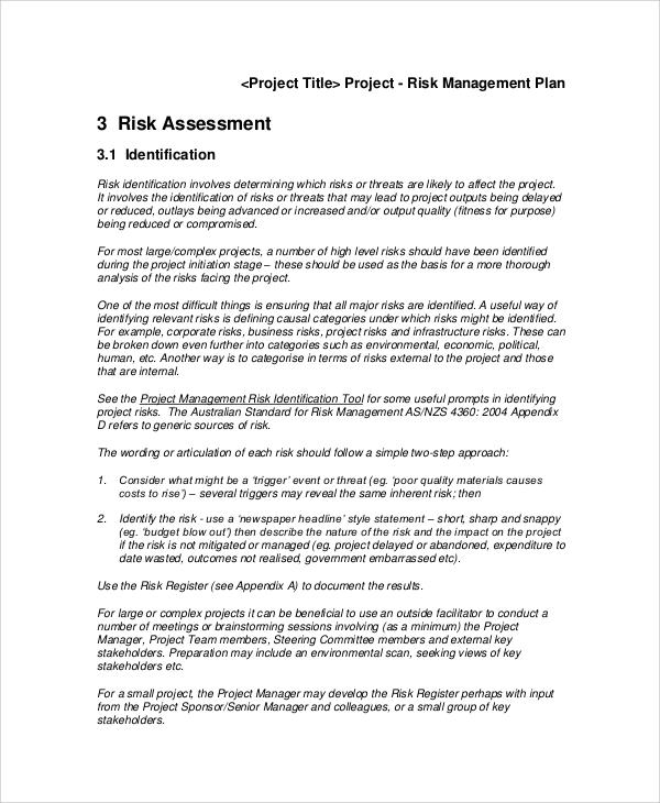 basic risk management plan