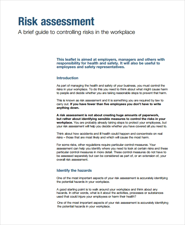Sample Risk Assessment Report - 6+ Documents in Word, PDF