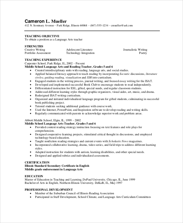 professional experienced resume
