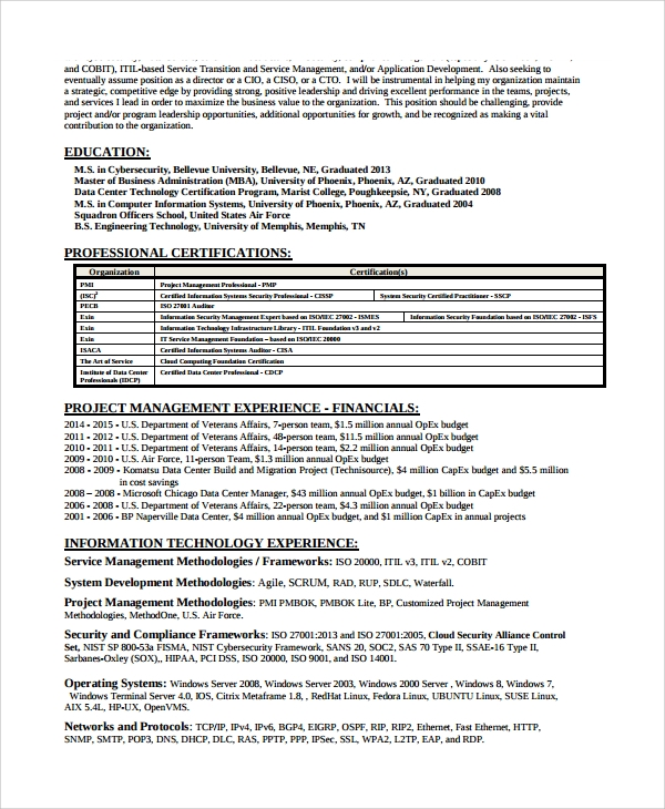 cyber security resume sle