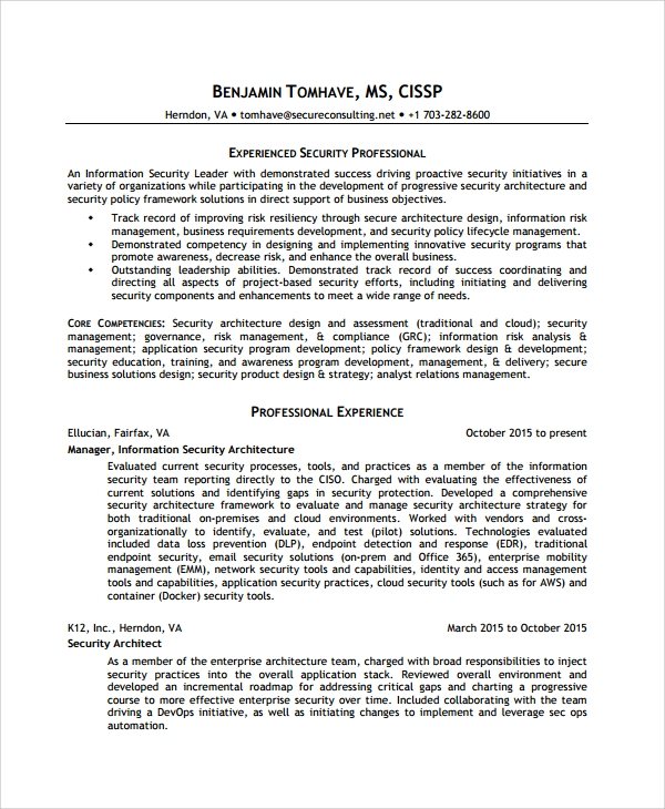 professional information security analyst resume - Information Security Resume