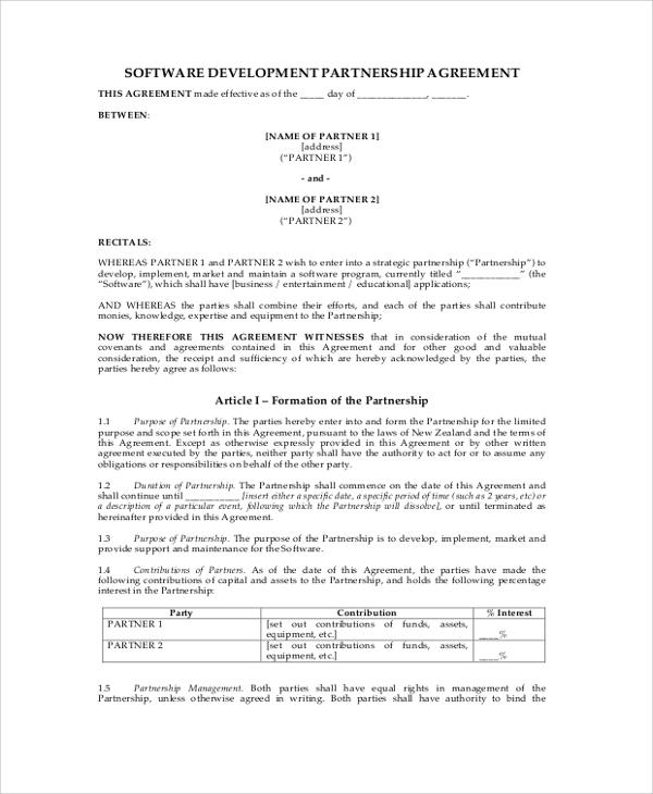 software development partnership agreement