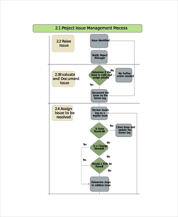 project issue management process