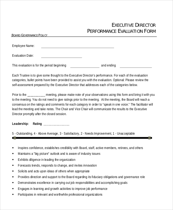 sample executive evaluation
