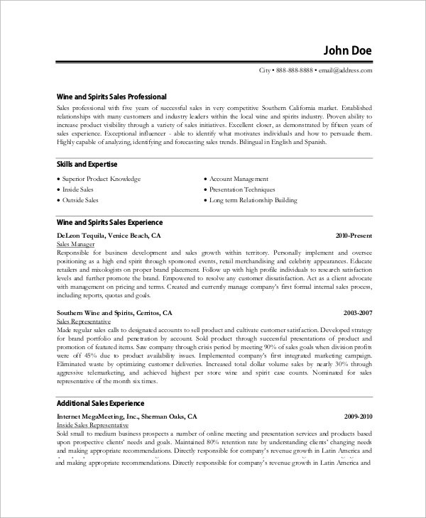Sample Professional Resume   Examples In Word Pdf