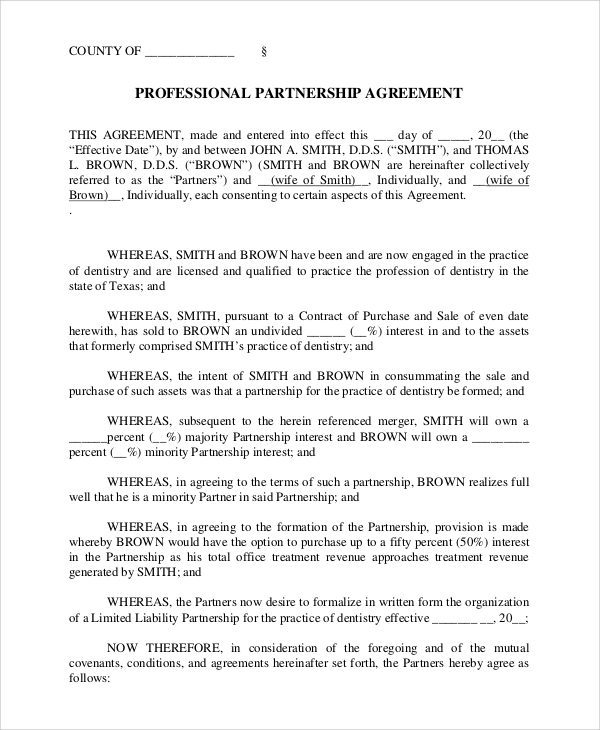 professional partnership agreement