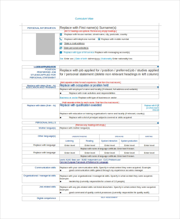 job cv example