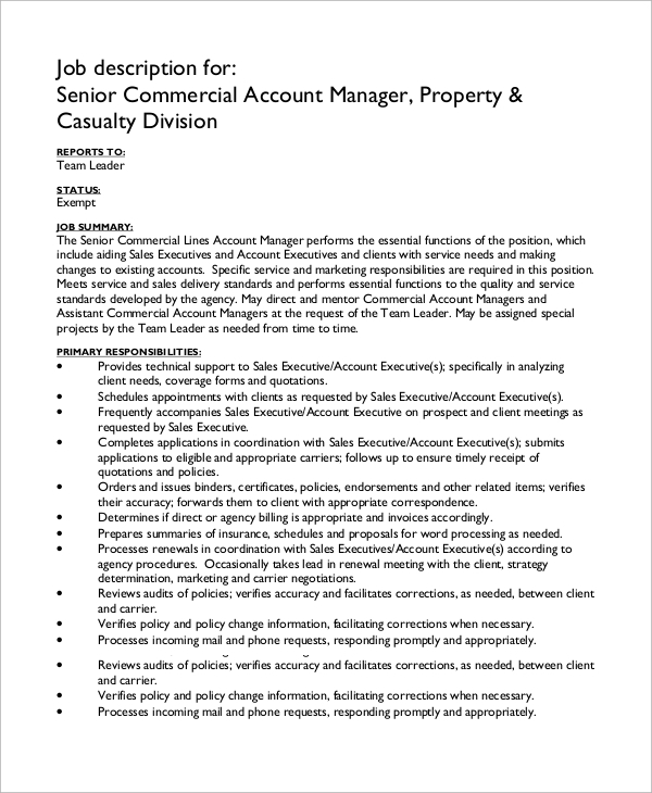 Sample Account Manager Job Description - 7+ Examples In Pdf