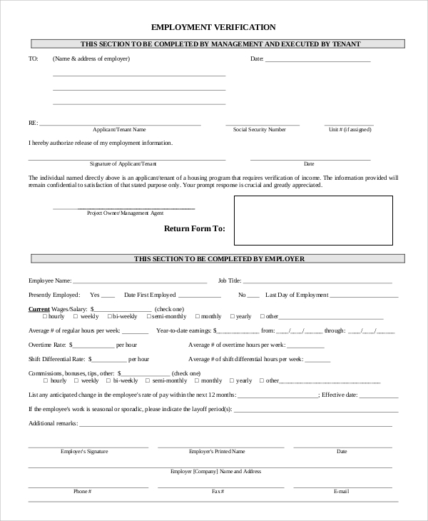 Sample Employment Verification Form   Examples In Word Pdf