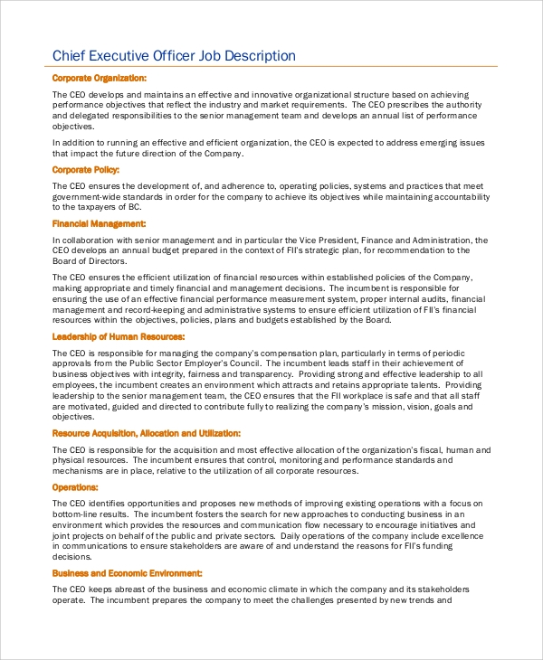 Chief Executive Officer Job Description Template  Chief Executive Officer Job Description