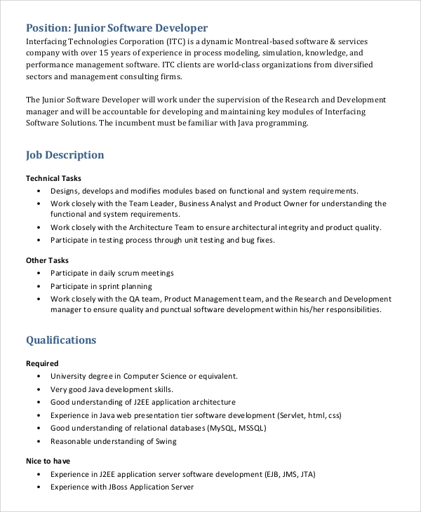 junior software engineer job description