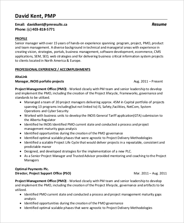 Sample Project Manager Resume   Examples In Word Pdf