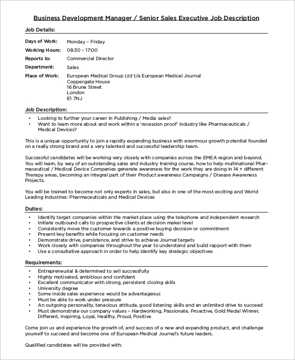 Sample Business Development Job Description   Examples In Pdf Word