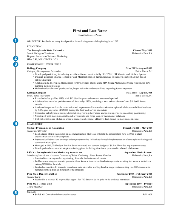 Sample Marketing Resume   Examples In Word Pdf