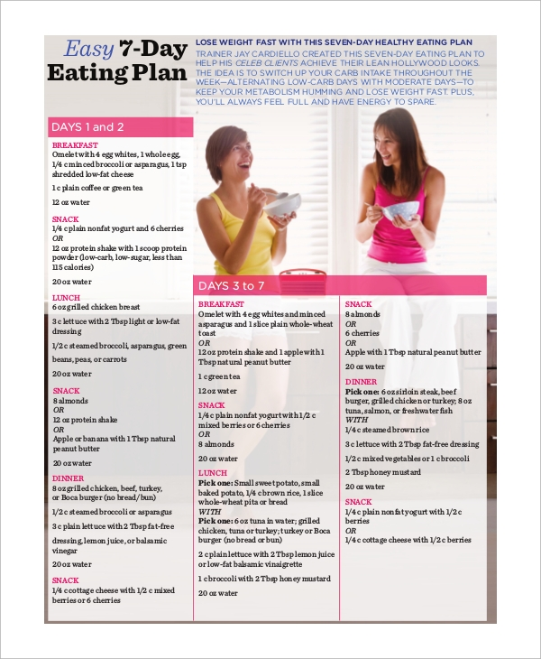Sample Healthy Meal Plan   Examples In Pdf