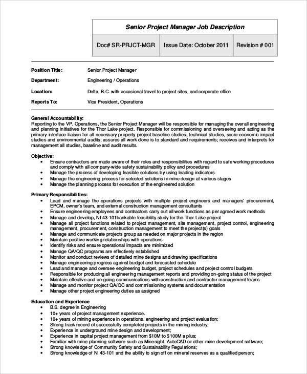 Sample Project Manager Job Description   Examples In Pdf Word
