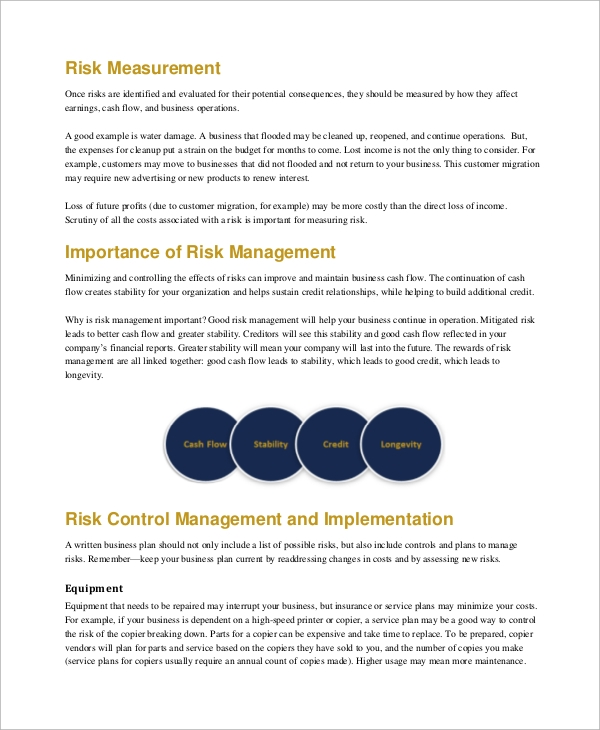 risk management plan example for business