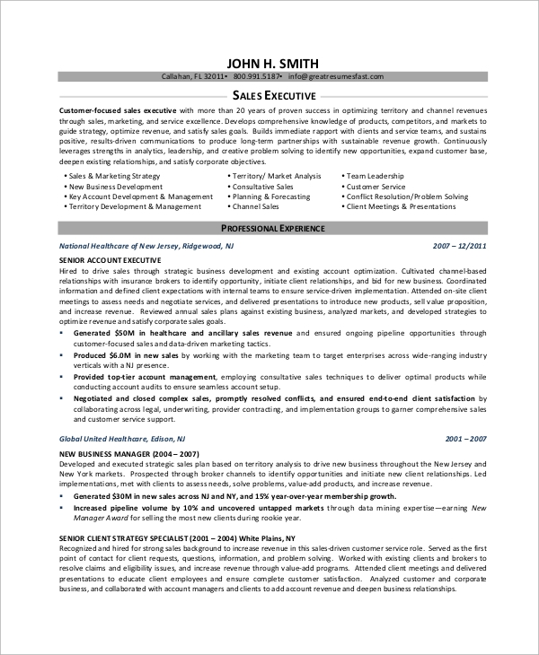 Sample Executive Resume   Examples In Word Pdf