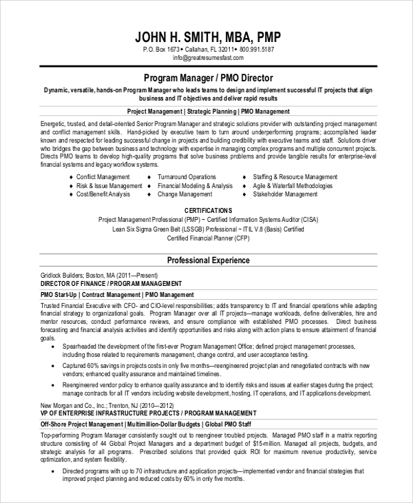 Merveilleux Project Manager Resume Summary Statement