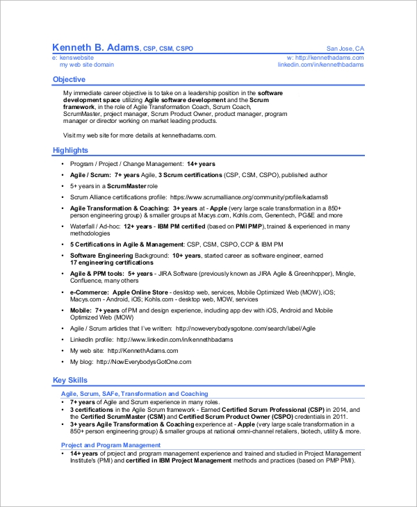professional scrum master resume