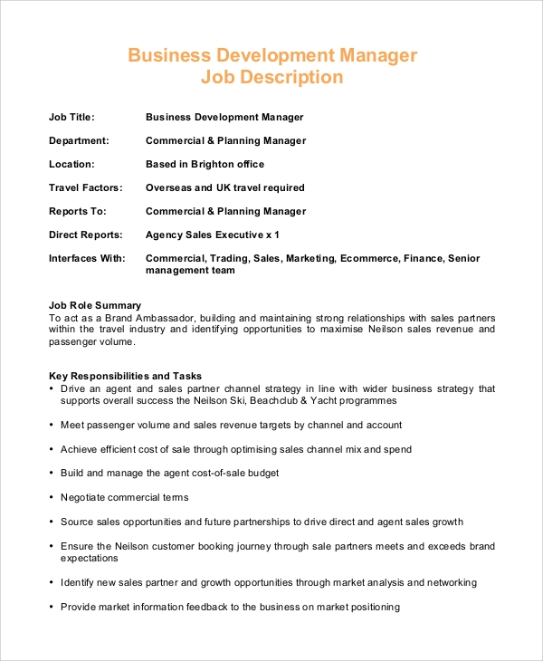 Sample Business Manager Job Description   Examples In Pdf Word
