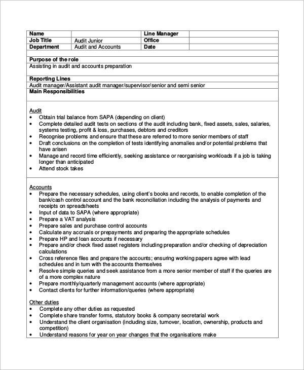 it auditor job description