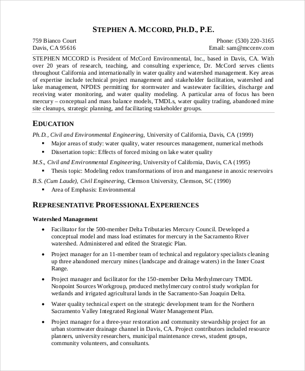 sample technical project manager resume
