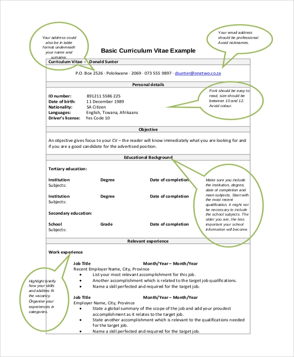 basic resume cv layout example