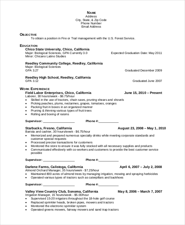 objective field in resume