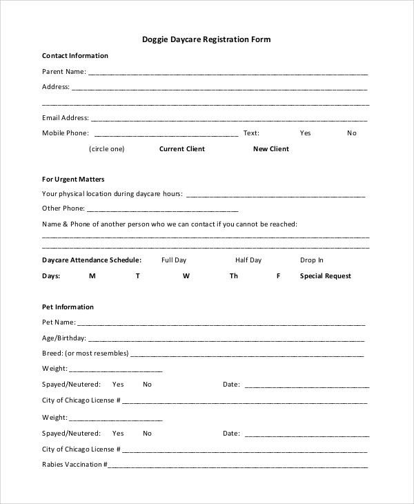 photograph regarding Home Daycare Forms Printable named Pattern Daycare Kind - 10+ Illustrations inside of PDF, Phrase