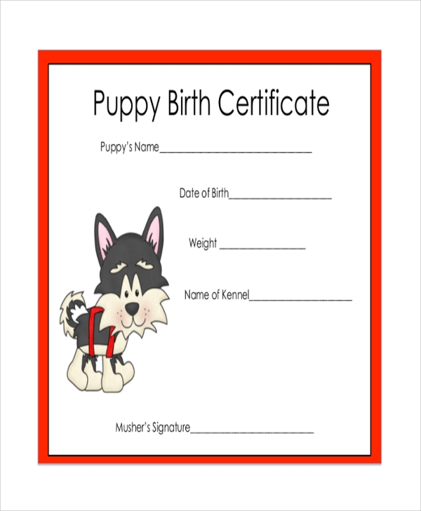 Sample certificate 43 examples in pdf word sample puppy birth certificate yadclub Gallery