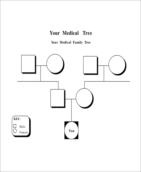 Sample Blank Family Tree   Examples In Word Pdf