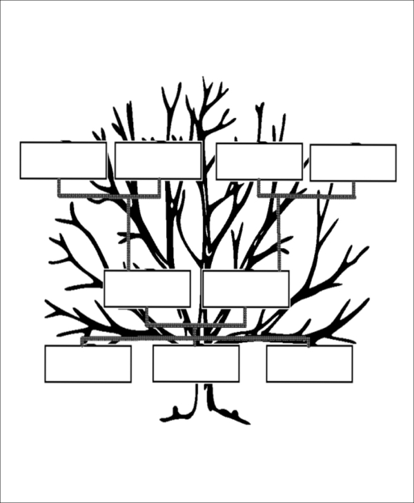 Sample Blank Family Tree 8 Examples in Word PDF – Blank Family Tree