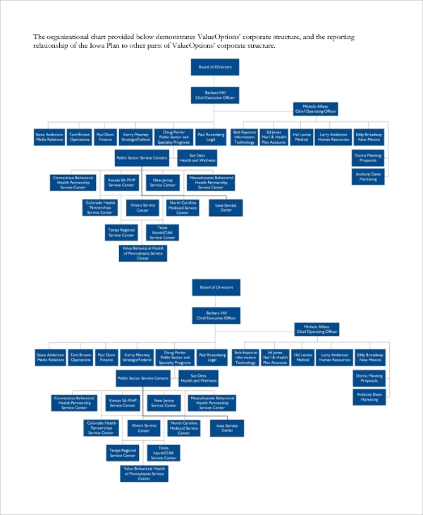 project organization and staffing chart