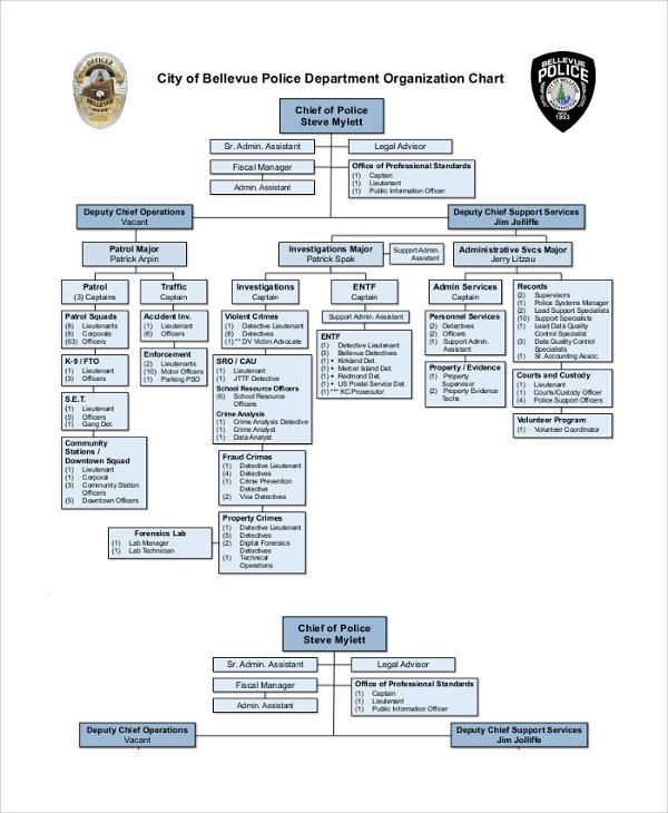 city of bellevue police department organization chart
