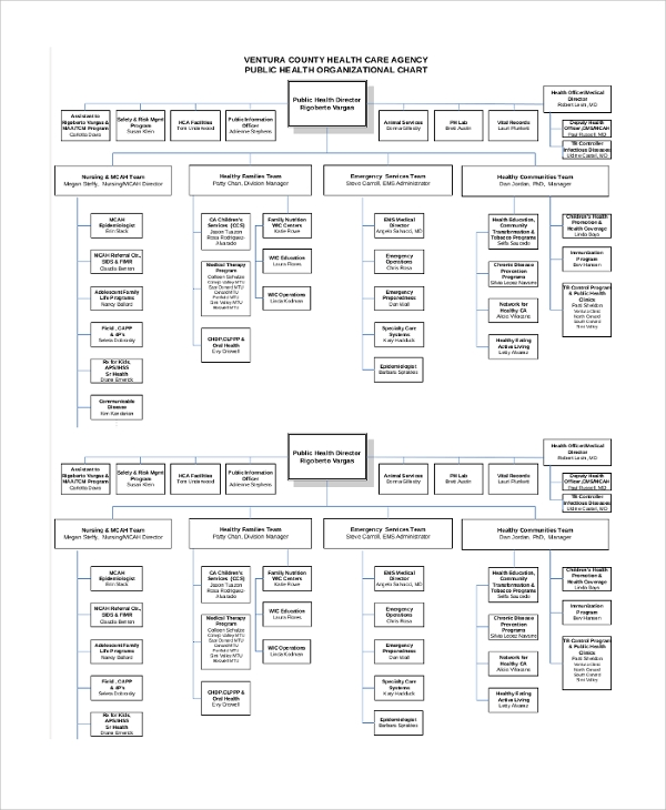 public health organizational chart