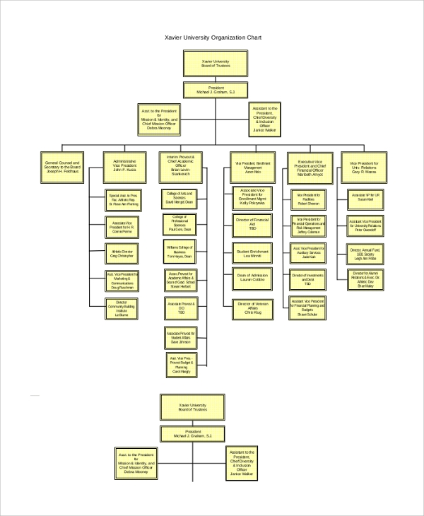 44 sample organizational charts sample templates xavier university organization chart toneelgroepblik