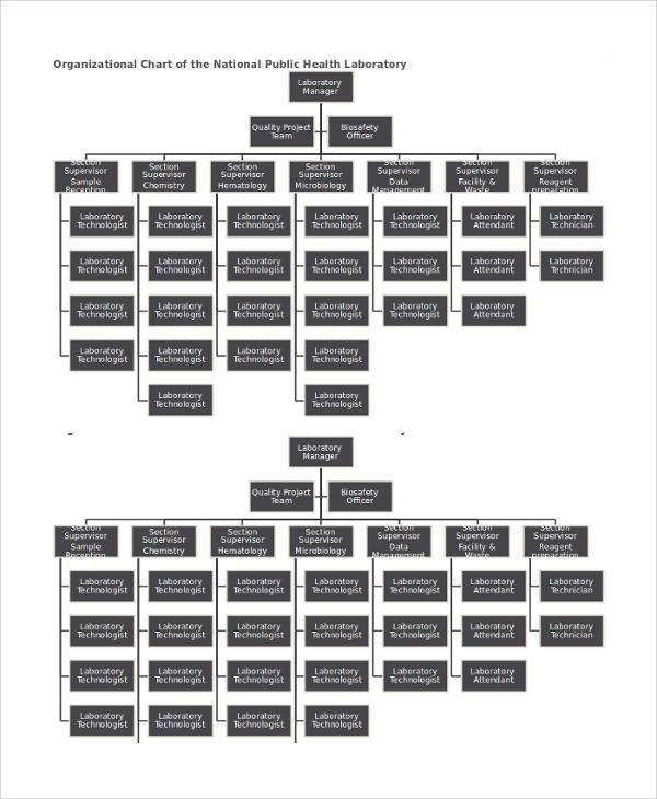 organizational chart of the national public health laboratory
