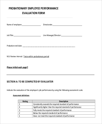 Sample Evaluation Form   Examples In Pdf Word